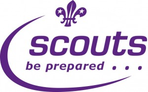 Image result for scouts